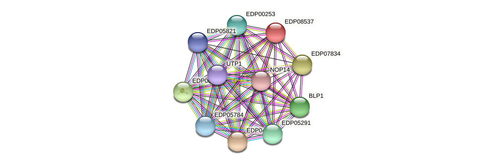 EDP08537 protein (Chlamydomonas reinhardtii) - STRING interaction network
