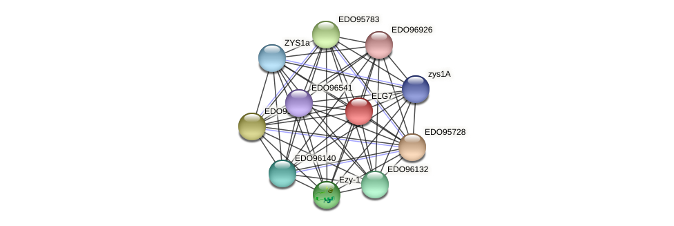 ELG7 protein (Chlamydomonas reinhardtii) - STRING interaction network