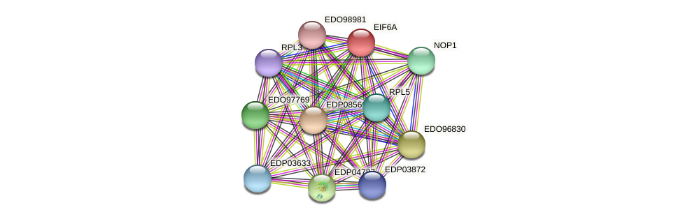 EIF6A protein (Chlamydomonas reinhardtii) - STRING interaction network