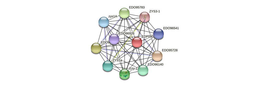 EDP09035 protein (Chlamydomonas reinhardtii) - STRING interaction network