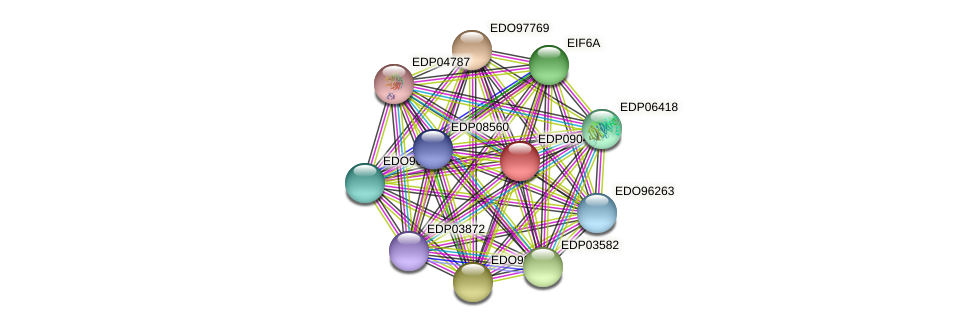 EDP09041 protein (Chlamydomonas reinhardtii) - STRING interaction network