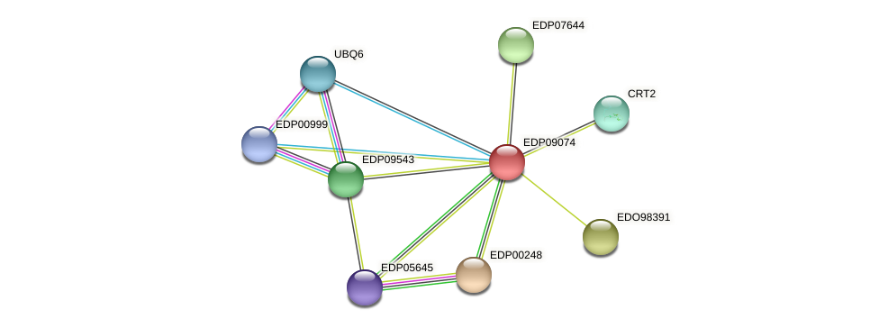 EDP09074 protein (Chlamydomonas reinhardtii) - STRING interaction network