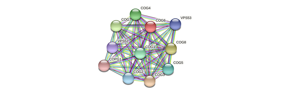 COG6 protein (Chlamydomonas reinhardtii) - STRING interaction network