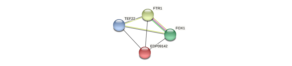EDP09142 protein (Chlamydomonas reinhardtii) - STRING interaction network