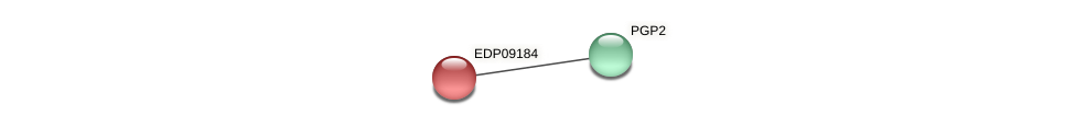 EDP09184 protein (Chlamydomonas reinhardtii) - STRING interaction network