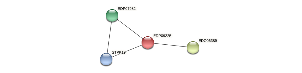 EDP09225 protein (Chlamydomonas reinhardtii) - STRING interaction network
