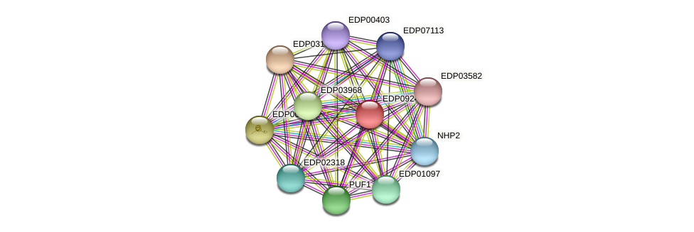 EDP09248 protein (Chlamydomonas reinhardtii) - STRING interaction network