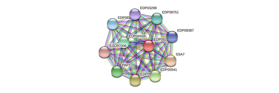 EDP09275 protein (Chlamydomonas reinhardtii) - STRING interaction network