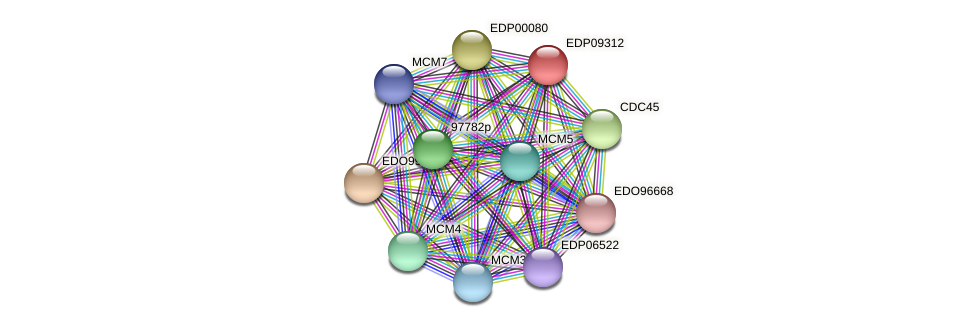 EDP09312 protein (Chlamydomonas reinhardtii) - STRING interaction network