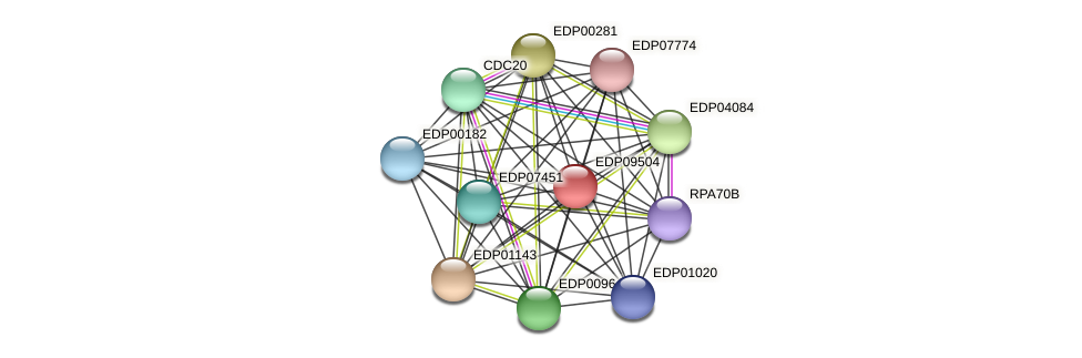 EDP09504 protein (Chlamydomonas reinhardtii) - STRING interaction network