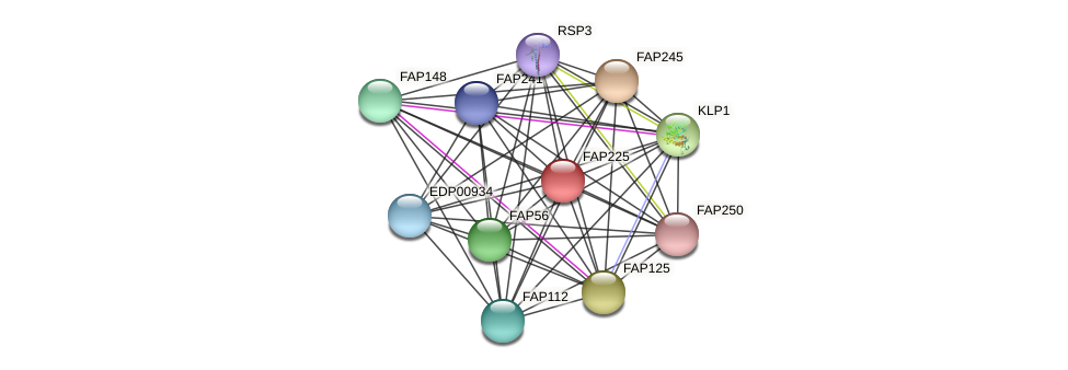 FAP225 protein (Chlamydomonas reinhardtii) - STRING interaction network