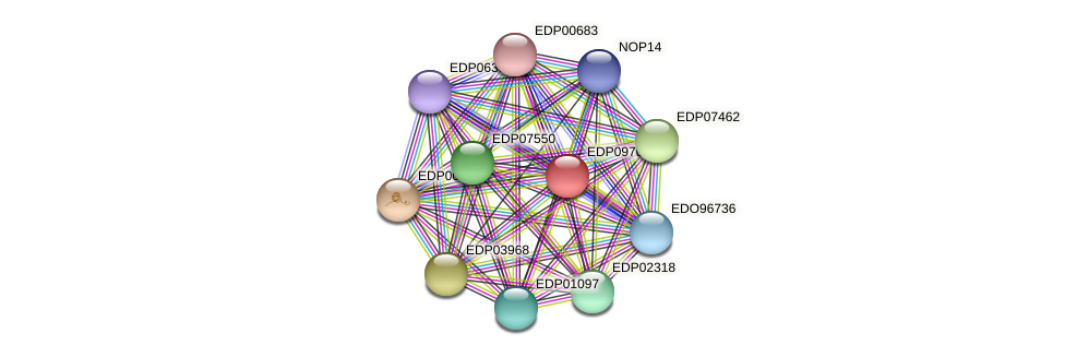 EDP09704 protein (Chlamydomonas reinhardtii) - STRING interaction network