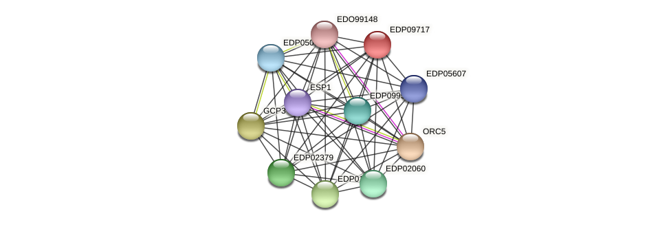 EDP09717 protein (Chlamydomonas reinhardtii) - STRING interaction network