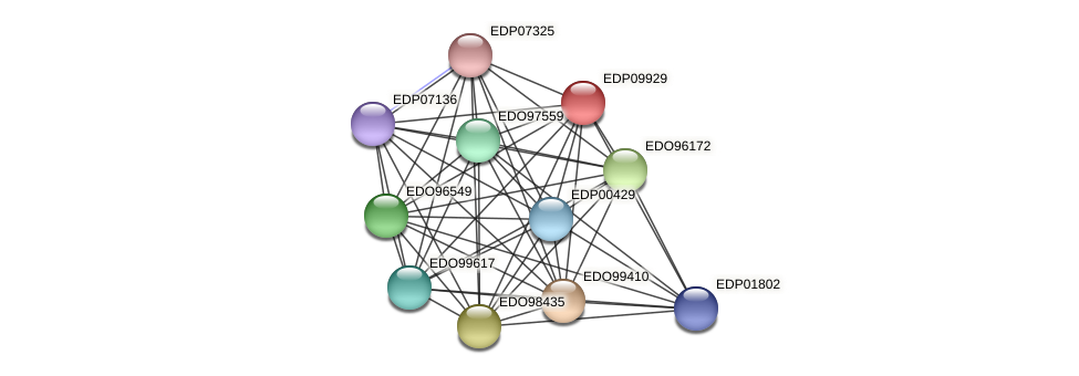EDP09929 protein (Chlamydomonas reinhardtii) - STRING interaction network