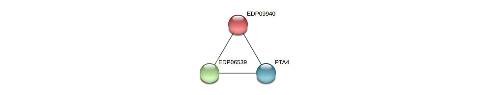 EDP09940 protein (Chlamydomonas reinhardtii) - STRING interaction network