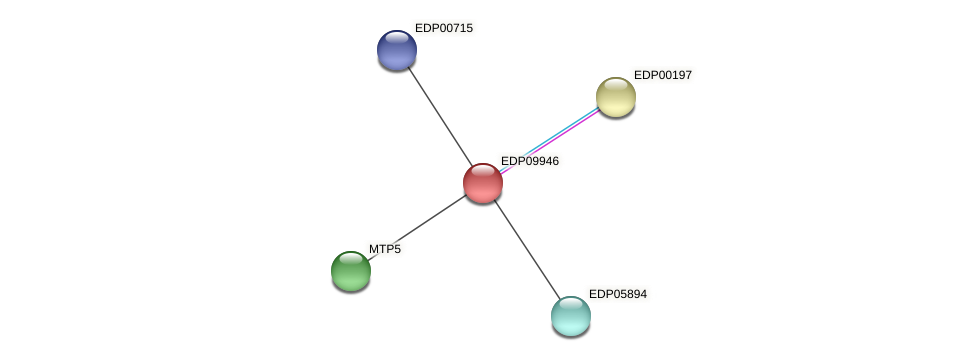 EDP09946 protein (Chlamydomonas reinhardtii) - STRING interaction network