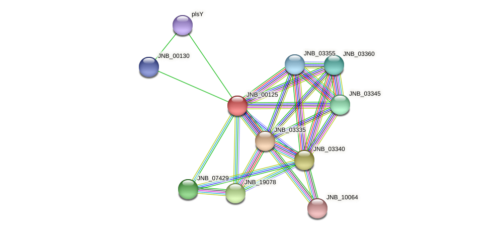 JNB_00125 protein (Janibacter sp. HTCC2649) - STRING interaction network