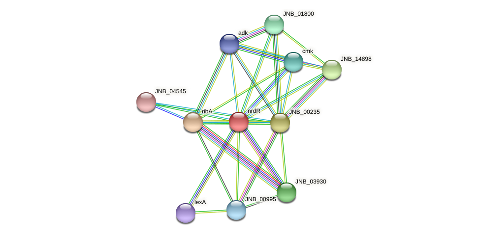 nrdR protein (Janibacter sp. HTCC2649) - STRING interaction network