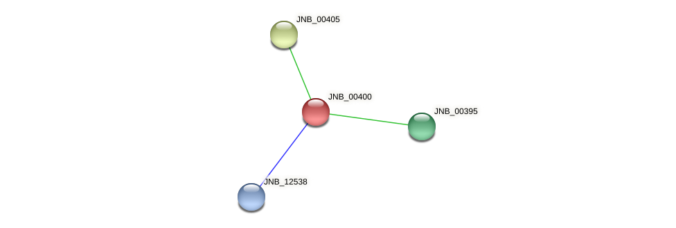 JNB_00400 protein (Janibacter sp. HTCC2649) - STRING interaction network