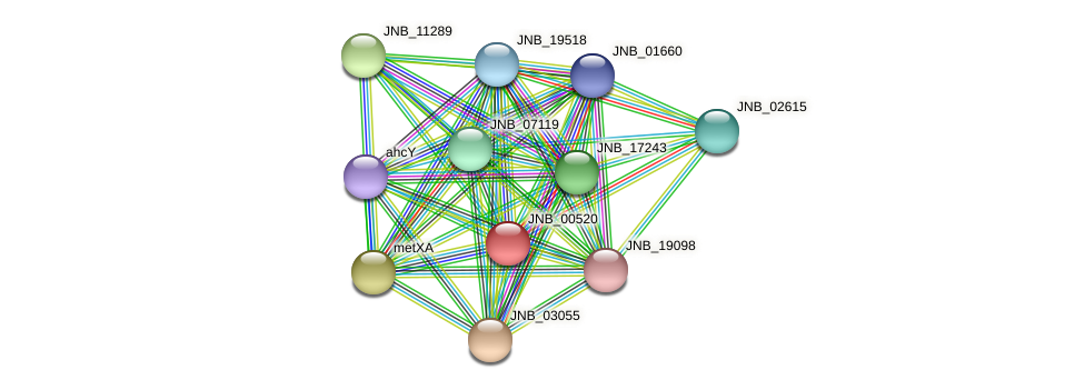 JNB_00520 protein (Janibacter sp. HTCC2649) - STRING interaction network