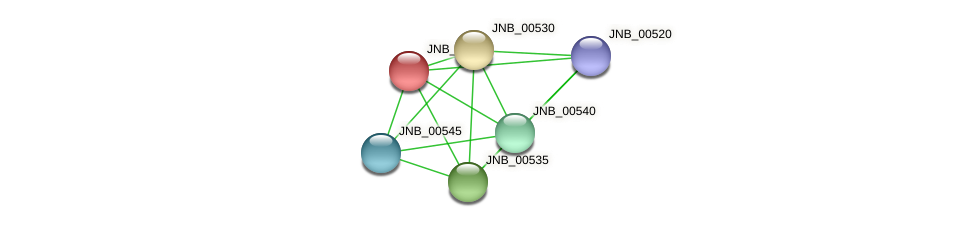 JNB_00525 protein (Janibacter sp. HTCC2649) - STRING interaction network