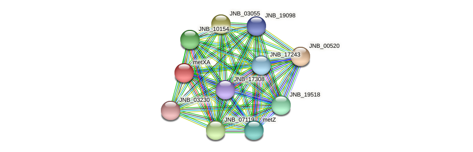 metX protein (Janibacter sp. HTCC2649) - STRING interaction network