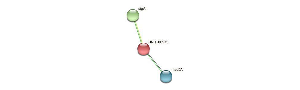 JNB_00575 protein (Janibacter sp. HTCC2649) - STRING interaction network