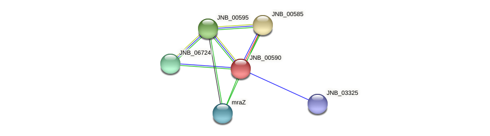 JNB_00590 protein (Janibacter sp. HTCC2649) - STRING interaction network
