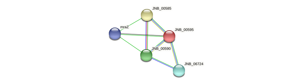 JNB_00595 protein (Janibacter sp. HTCC2649) - STRING interaction network