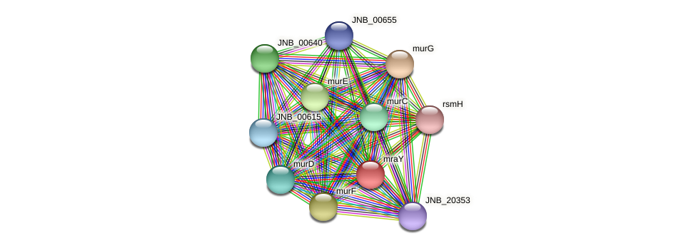 JNB_00630 protein (Janibacter sp. HTCC2649) - STRING interaction network