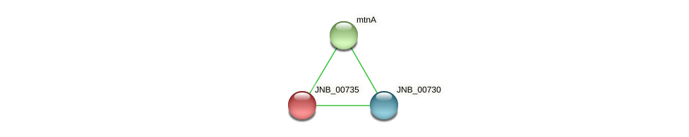 JNB_00735 protein (Janibacter sp. HTCC2649) - STRING interaction network