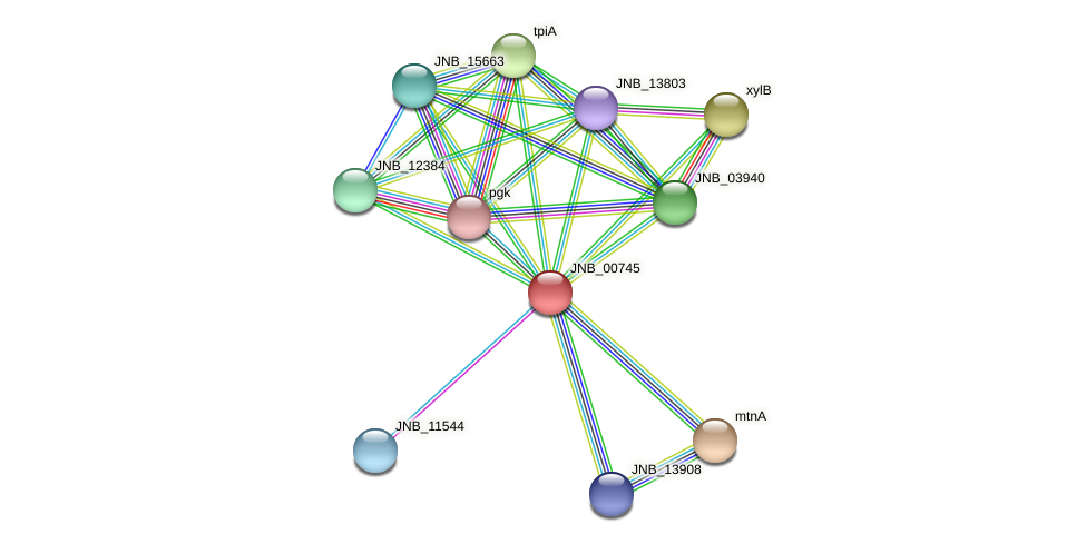 JNB_00745 protein (Janibacter sp. HTCC2649) - STRING interaction network