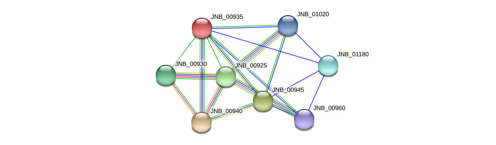 JNB_00935 protein (Janibacter sp. HTCC2649) - STRING interaction network