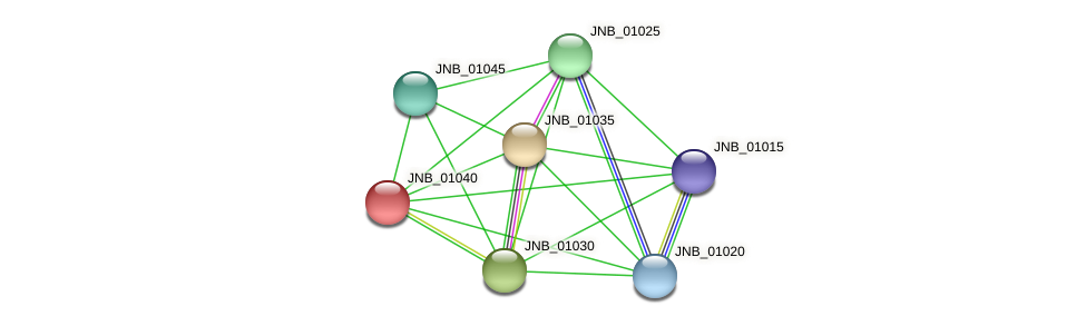 JNB_01040 protein (Janibacter sp. HTCC2649) - STRING interaction network