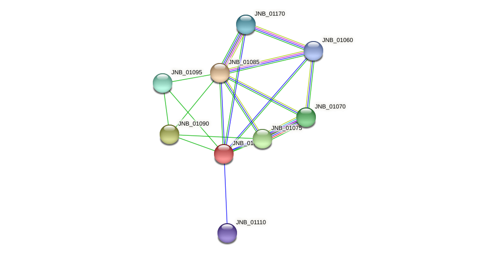 JNB_01080 protein (Janibacter sp. HTCC2649) - STRING interaction network