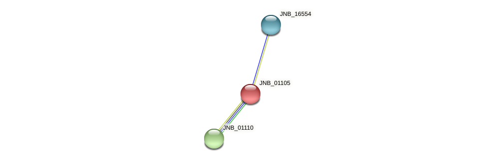 JNB_01105 protein (Janibacter sp. HTCC2649) - STRING interaction network