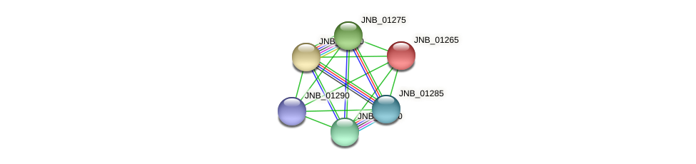 JNB_01265 protein (Janibacter sp. HTCC2649) - STRING interaction network