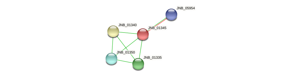 JNB_01345 protein (Janibacter sp. HTCC2649) - STRING interaction network