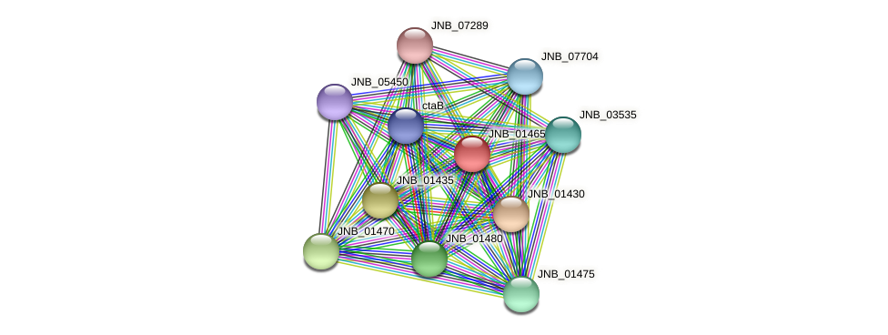 JNB_01465 protein (Janibacter sp. HTCC2649) - STRING interaction network