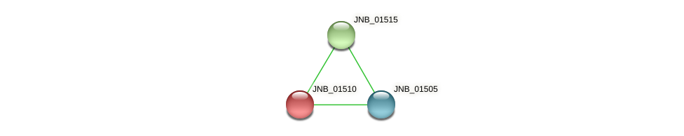 JNB_01510 protein (Janibacter sp. HTCC2649) - STRING interaction network