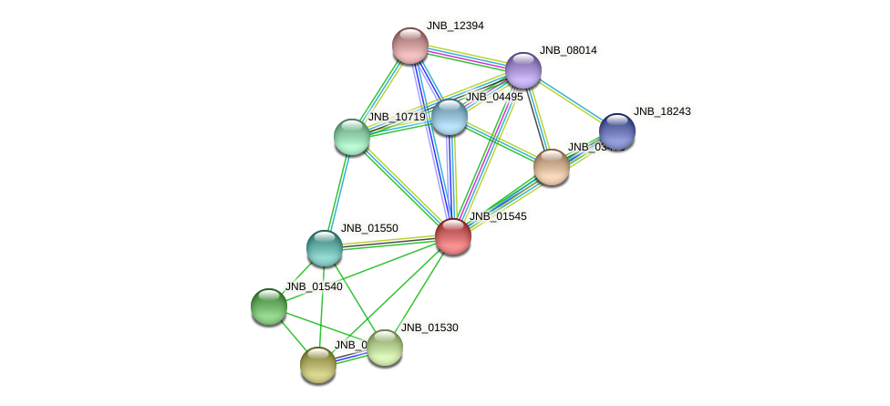 JNB_01545 protein (Janibacter sp. HTCC2649) - STRING interaction network