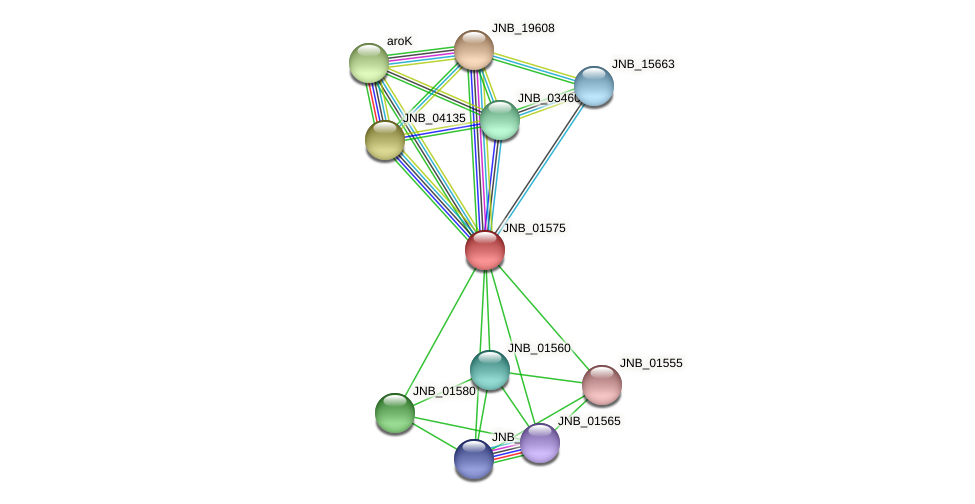 JNB_01575 protein (Janibacter sp. HTCC2649) - STRING interaction network
