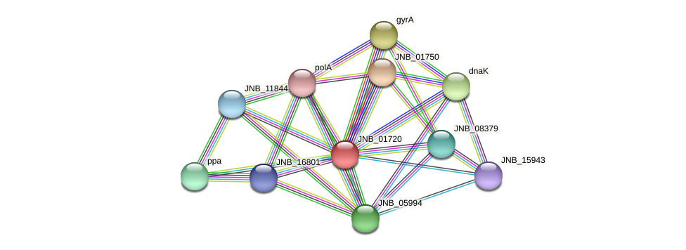 JNB_01720 protein (Janibacter sp. HTCC2649) - STRING interaction network