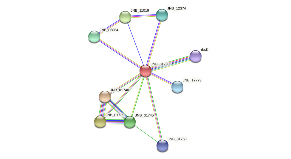 JNB_01730 protein (Janibacter sp. HTCC2649) - STRING interaction network