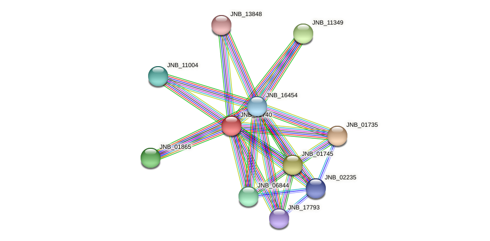JNB_01740 protein (Janibacter sp. HTCC2649) - STRING interaction network