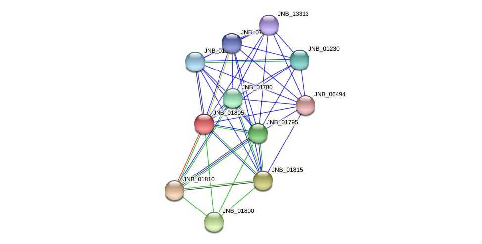 JNB_01805 protein (Janibacter sp. HTCC2649) - STRING interaction network