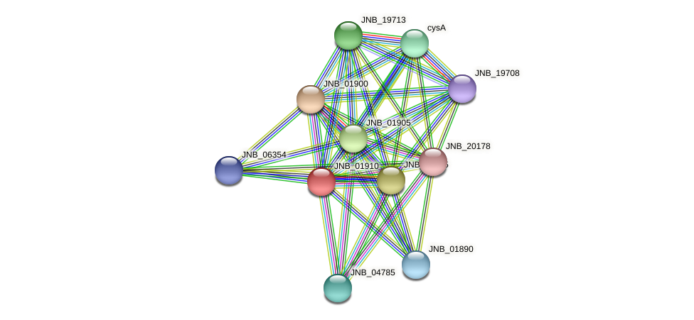 JNB_01910 protein (Janibacter sp. HTCC2649) - STRING interaction network