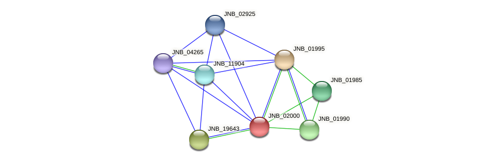 JNB_02000 protein (Janibacter sp. HTCC2649) - STRING interaction network