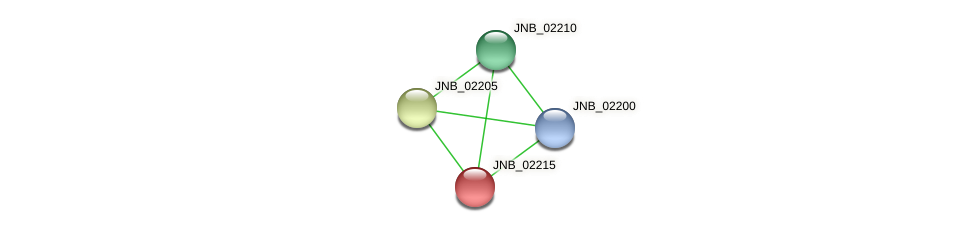 JNB_02215 protein (Janibacter sp. HTCC2649) - STRING interaction network