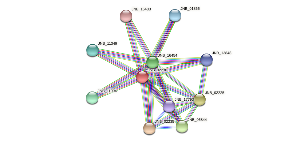 JNB_02230 protein (Janibacter sp. HTCC2649) - STRING interaction network